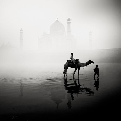 India_Acompaña